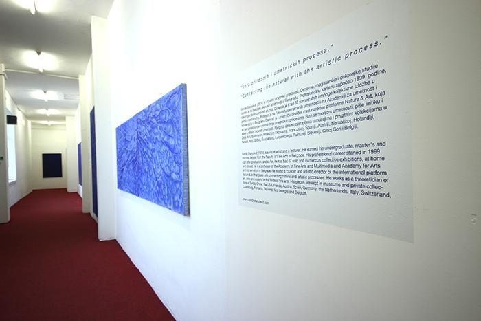 Sonars, Heritage House Gallery, Belgrade, March 2020